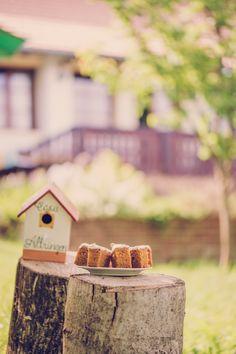 #plating #cake #carrotcake #casaaltringen Romanian Food, Carrot Cake, Plating, Traditional, Bird, Outdoor Decor, Home Decor, Kitchens, Decoration Home