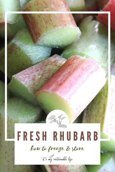Freezing and storing the short-lived rhubarb harvest will have all rhubarb aficionados rejoicing! | It's My Sustainable Life @itsmysustainablelife #rhubarb #freshrhubarb #rhubarbharvest #preservingrhubarb #freezingrhubarb #howtofreezerhubarb #howtofreezeandstorerhubarb #itsmysustainablelife