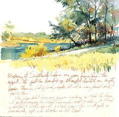 Smithville Lake Trees   Flickr - Photo Sharing!