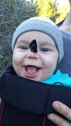 Baby with butterfly on his nose Precious Children, Beautiful Children, Beautiful Babies, Funny Kids, Cute Kids, Cute Babies, Baby Kind, Baby Love, Baby Pictures