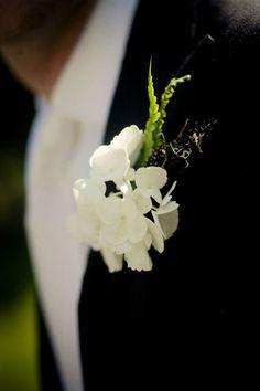 Flowers - Hydrangea boutonnieres