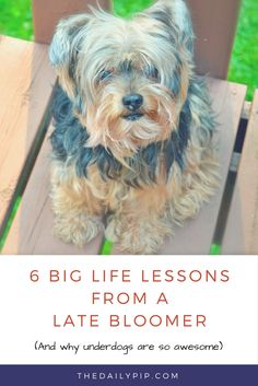 6 Big Life Lessons From a Late Bloomer