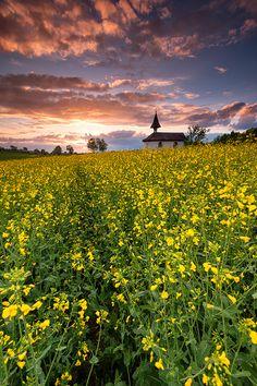 Landschaft im Thurgau