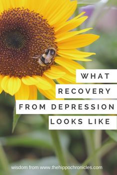 Recovering from depression and anxiety can look like, enjoying the ordinary beauty, celebrating successes.