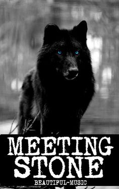My book, Meeting Stone :) if you enjoy hybrid stories, that is, here's the link... http://www.wattpad.com/story/24537824-meeting-stone