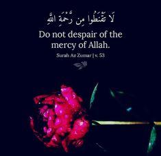 Doa Islam, Islam Quran, Quran Quotes, Islamic Quotes, Makeup And Beauty Blog, Allah Love, Holy Quran, Verses, Wisdom
