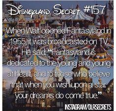 Ahhh I love Walt Disney! Disneyland Secrets, Disney Secrets, Disney Tips, Disneyland Trip, Disney Vacations, Disneyland History, Family Vacations, Cruise Vacation, Family Travel