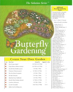Butterfly Gardening - A list of plants that will attract butterflies to the garden.