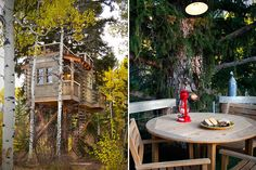 Tree-House-For-the-Grown_ups-in-Colorado-05