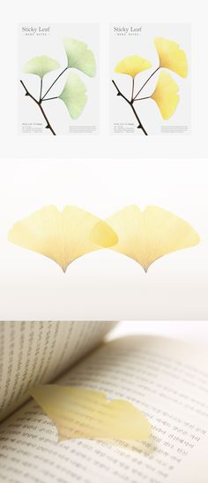 Transparent Ginkgo Leaf Sticky Note Set