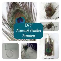 This peacock feather pendant is elegant and the colors are amazing. Simple to create with just a few supplies. This project is suitable for all ages.