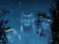 StarClan Warriors created by me on deviantart.com (my username there is Tawnystar4311)