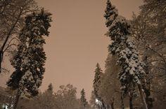 ljcfyi: Night snow