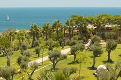 Green paradise in Algarve. Popular Holiday Destinations, Perfect Golf, Algarve, Hotels And Resorts, Portugal, Vineyard, Golf Courses, Paradise, Places