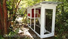 Maybe some day I too will have backyard chickens.  This is a possibility