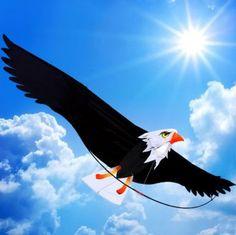 3D Eagle Kite Outdoor Beach Kites Watersport Fun Sports Stunt Parafoil Parachute Folding Beach Kite For Beginner