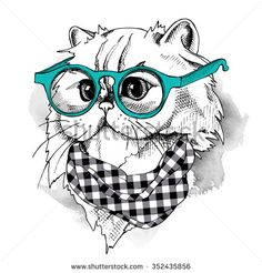 Himalayan cat in glasses and cravat. Vector illustration. - stock vector