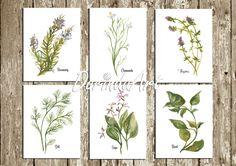 Watercolor Herbs Printable Set of 6 Botanical by DorindaArt