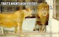 bahahahahha!