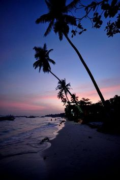 Alona Beach Panglao Bohol, Philippines
