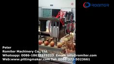 Automatic Apple Peeling and Core Pitting Machine for Sale