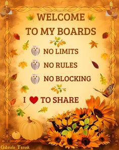 No Rules!