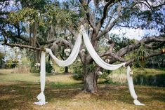 Love this for a ceremony! Fabric draped over tree branches to create an arch- so gorgeous! | Tiffani Jones