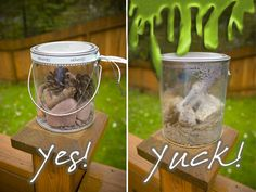 Vacation memory jars.   This writer advises freezing stuff (like twigs, dirt, etc) for a week or so before putting them in the memory jar, to kill off stuff that could make your jar get yucky.