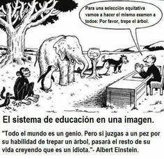 El sistema de educacion