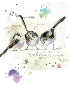 Long Tailed Tits by Jane Crowther. Design for Bug Art greeting cards. Watercolor Images, Watercolor Sketch, Watercolor Bird, Watercolor Animals, Watercolor Paintings, Watercolors, Art Carte, Art Aquarelle, Bug Art
