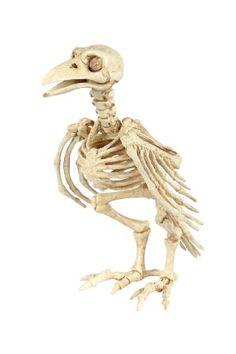Crazy Bonez Skeleton Crow Seasons http://www.amazon.com/dp/B00KEW15FI/ref=cm_sw_r_pi_dp_.PcWtb1H969JJM7F