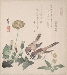 Teisai Hokuba (Japanese, 1771–1844). Spring Rain Collection (Harusame shū), vol. 3: Sparrows and Dandelions, ca. 1820. The Metropolitan Museum of Art, New York. H. O. Havemeyer Collection, Bequest of Mrs. H. O. Havemeyer, 1929 (JP2364) | The poems inscribed on the prints usually include felicitous imagery connected with spring, which in the lunar calendar begins on the first day of the first month. #spring
