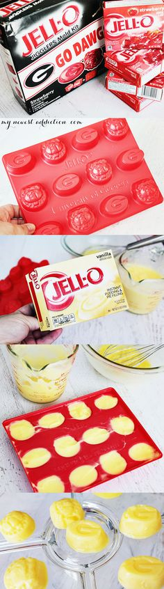 University of Georgia Jello Mold + Dawg Food Recipe