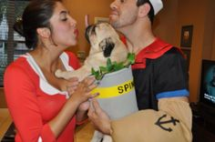 Rider the pug and his parents Halloween 2012. See that pink thing sticking up from Rider? That's his tongue haha! @Sydney Roy