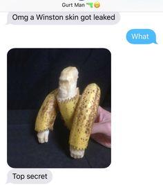Winston Skin Leak