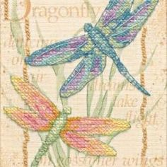 Dragonfly+Cross+Stitch+Patterns