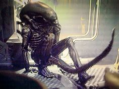Rare Behind-the-Scenes Photos from the Set of Alien (1979) - Scified.com