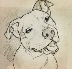 Free To Use Pit Bull Lineart Please Read The Rules Before Using