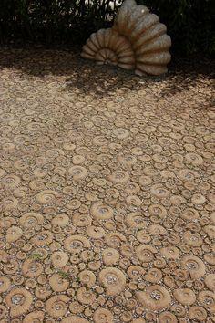 Ammonite patio..amazing. #ammonite   via http://peaceofshell.tumblr.com/post/9625984603