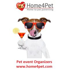 Summers are here and looking for cooler climes and a nice time with your pet, visit www.home4pet.com for more options. #hotel,#pet,#drink #event