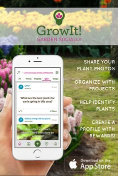 Have your plants identified, and your questions answered for free on GrowIt! Join the hottest plant community today. Whether you're into succulents, herbs, flowers, trees, or vegetables, we can help you grow it all.