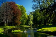 Relax in the Cottbus Park of the Branitz castle