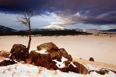 February 6, 2015 - February 6, 2015 The distant Kendrick Peak appears to get a pat on the head from a cloud. Photo By: John Tennant - See more at: http://www.arizonahighways.com/photography/photo-archive#sthash.VlYak986.dpuf