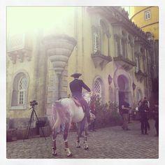horse - Queluz