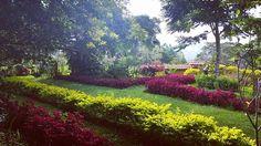 Sindamanoy ECO Hostal Mente Cuerpo es un espacio que promueve la relajación corporal y el contacto con la naturaleza. La Bioarquitectura, los senderos aromáticos de plantas medicinales en armonía con el Paisaje son los elementos físicos que componen este lugar, sirviendo de escenario para el trabajo de la consciencia, la relajación y el crecimiento interior.  #naturaleza #zapatoca #sindamanoy #relax #salud #santander #colombia #relajacion #conscienciahttps://www.instagram.com/p/BLR2zQvDzDU/