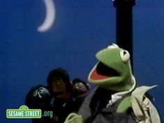 Kermit The Frog -- Sesame Street: This Frog