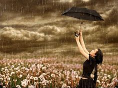 Rain - rain, girl, flowers, storm, umbrella