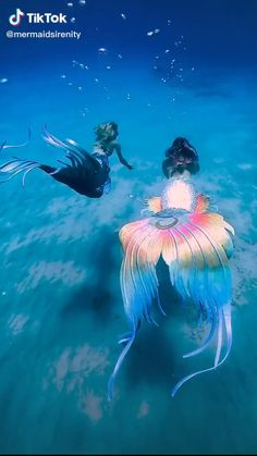 Everybody gets by with a little help from a friend! Just remember to keep using that tail fin and to just keep on swimming! Video credit goes to @mermaidsirenity via Tik Tok #motivation #mermaidaesthetic #mermaidkissesstarfishwishes #goodvibes #friendship #summertime #beachaesthetic #beachfeel #sunshine #saveouroceans Fantasy Creatures, Mythical Creatures, Sea Creatures, Fantasy Mermaids, Mermaids And Mermen, Real Life Mermaids, The Ocean, Funny Animals, Cute Animals