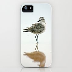 Sandpipper iPhone Case by David Cutts - $35.00