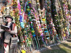 Palm Sunday Mass Palm Display